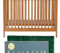 Deer Themed Home Decor Lodge Rugs Clearance Minimalist Small Living Room Interior Ideas