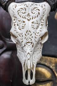 real cow skull horns home interior trophy deer decor elk bison