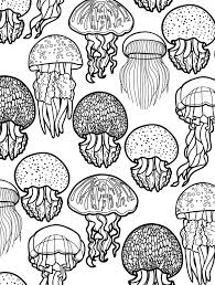 pretty looking ocean coloring pages for adults sea animals