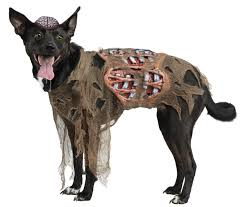 dog clothes for halloween zombie gory bloody pet halloween costume dog clothes clothing ebay