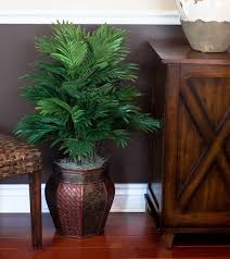 floor plant amazon com nearly natural 6651 areca palm with vase decorative