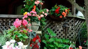 Flower Wallpaper Home Decor Decor Tag Wallpapers Home Hanging Gardens Decor Pots Colors