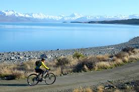 The New Zealand Cycle Trail Official Website Cycling Holidays In New Zealand New Zealand Rent A Car