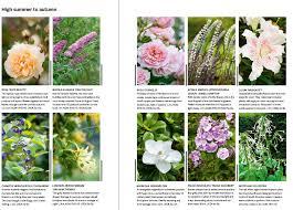 Fragrant Patio Plants - 26 of the best scented plants gardens illustrated