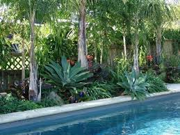 Tropical Landscape Ideas by Best 25 Tropical Pool Landscaping Ideas Only On Pinterest Pool