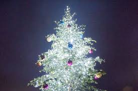 federal way hosting annual tree lighting federal way mirror
