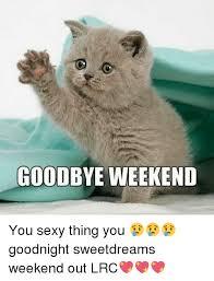 Goodnight Meme Cute - 20 cutest goodnight memes sayingimages com