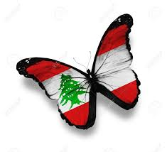 Libanese Flag Lebanese Flag Butterfly Isolated On White Stock Photo Picture