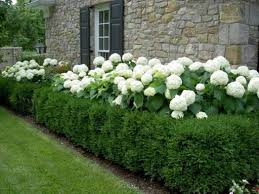 How To Design A Flower Bed How To Design A Dreamy Backyard Retreat Decorated Life