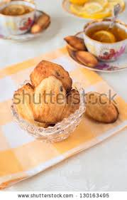 seashell shaped cookies madeleine cookies stock images royalty free images vectors