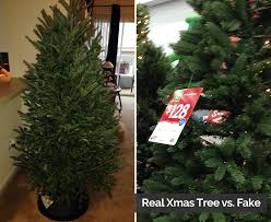 real tree or why we say real is greener