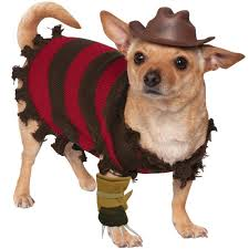 freddy krueger costume a freddy krueger costume for pets