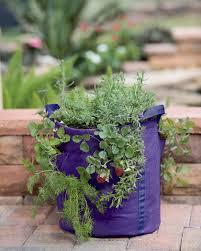 strawberry pot gardener u0027s best strawberry and herb fabric grow bag