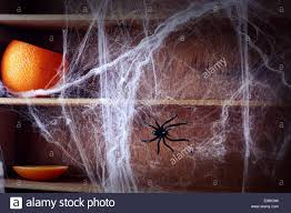 spooky halloween spider web background covering wooden shelves