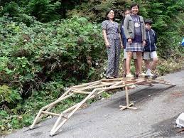 wooden bridge plans small log bridge google search out side structures pinterest