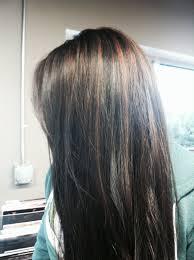 cinnamon brown highlights with dark brown black hair hair