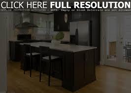 kitchen cabinets refrigerator wonderful modern design solid wood kitchen cabinets ideas best