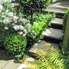 small garden ideas from the experts design for me