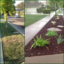 grass parkway turned drought tolerant mountain decor pinterest