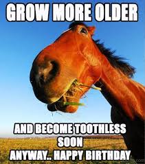 Horse Birthday Meme - 80 mad horse memes pictures