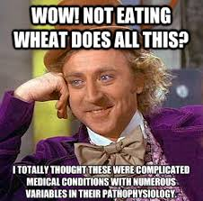 Diabetes Guy Meme - where is the science and data behind dr william davis wheat belly