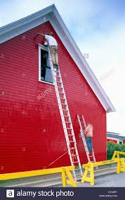 bright red paint for walls painters standing on ladders painting bright red paint on
