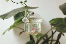 Hanging Home Decor Vases Sale Picture More Detailed Picture About Free Shipping