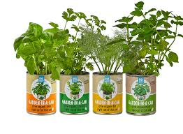 garden in a can herb garden 4 pack indoor herb garden