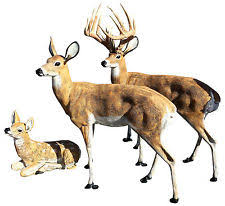 deer statue ebay