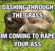 Sloth Meme Pictures - sloth meme laughed so incredibly hard funnies pinterest meme