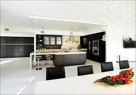 Red Gloss Kitchen Cabinets Kitchen Diy High Gloss Kitchen Cabinets Lucite Cabinet High
