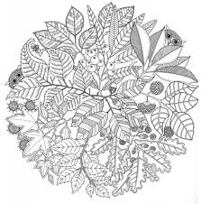 get this printable autumn coloring pages for adults 55cv67