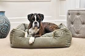 stylish dog bed the most stylish dog beds popsugar home most