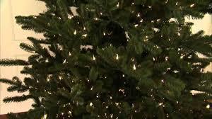 tree treetopia stylish for small spaces blogtreetopiacom stylish