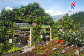 wonder wall u2013 the high tech self watering vertical garden planter