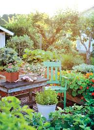 how to create a vegetable garden in your backyard canadian living