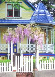 wisteria has a long history in the u s hgtv