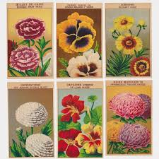 vintage seed packets antique seed packet labels with botanical illustrations make great