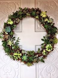 succulent wreath how to make a succulent wreath snapguide