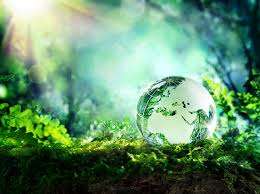 globe on moss in a forest europe environment concept heather