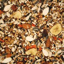 types of bird seed for wild birds bird cages
