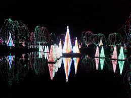Columbus Zoo Lights by Wildlights Author Erin L Millar