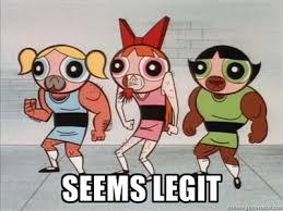 Powerpuff Girls Meme - seems legit powerpuff girls girls and puff girl