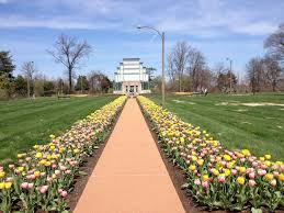 top 11 things to see and do in forest park in st louis