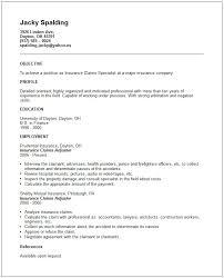 insurance cv examples some cv cv samples doc 8001035 basic resume templates for high