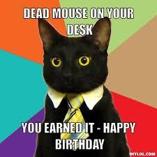 Meme Generator Birthday - cat birthday meme generator birthday best of the funny meme