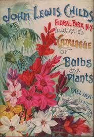 best 25 floral park ideas on pinterest
