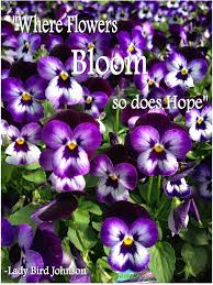 the garden quotes archive muslimgrower com