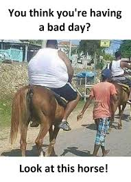 Bad Day Meme - having a bad day funny pictures quotes memes funny images