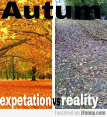 Autumn Memes - pin by moccasinsdirect com on funny memes showcase from minnetonka